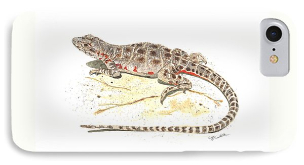 Blunt-nosed Leopard Lizard  IPhone Case by Cindy Hitchcock