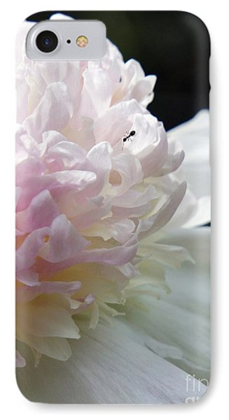 Blushing Peony  IPhone Case by Lilliana Mendez