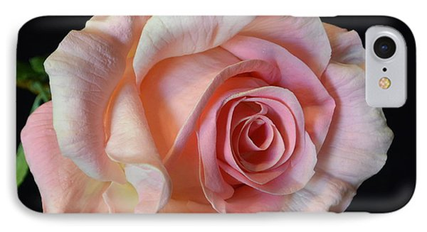 IPhone Case featuring the photograph Blushing Pink Rose by Jeannie Rhode