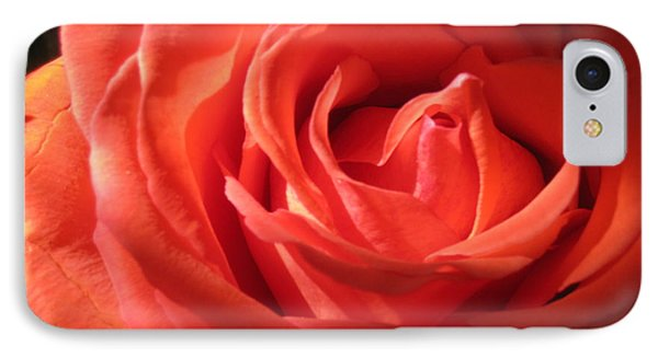 Blushing Orange Rose 1 IPhone Case by Tara  Shalton
