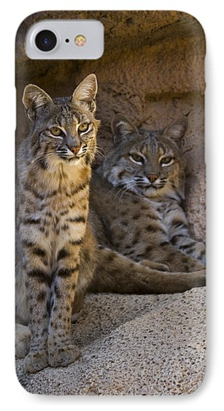 IPhone Case featuring the photograph Bobcat 8 by Arterra Picture Library