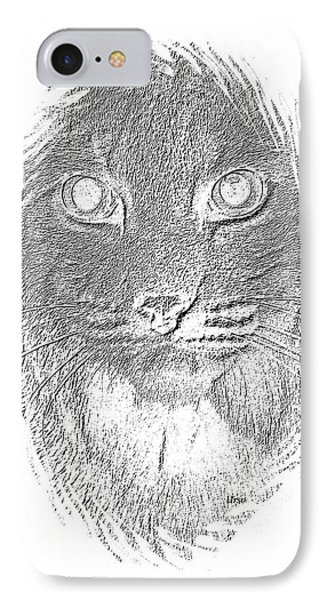 Bobcat In Charcoal IPhone Case by Maria Urso