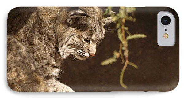 Bobcat Phone Case by James Peterson