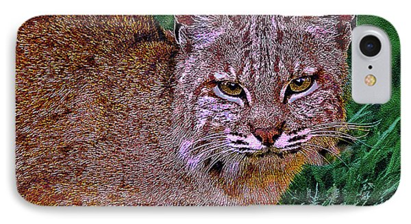 Bobcat Sedona Wilderness IPhone Case