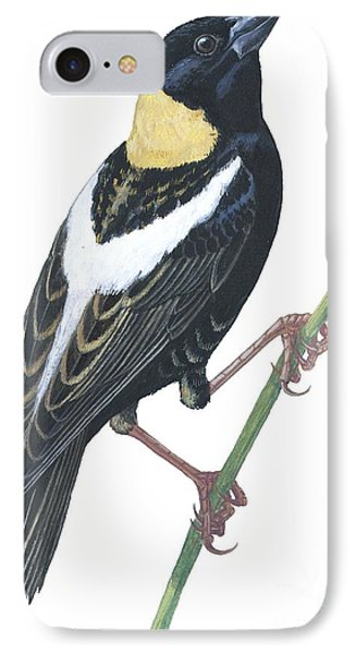 Bobolink IPhone Case
