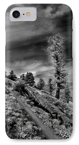 Bogus Basin Trail IPhone Case