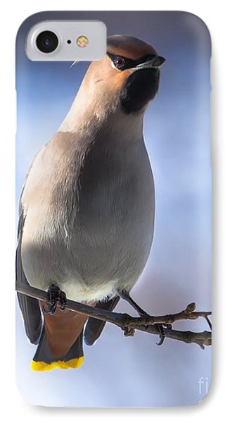 IPhone Case featuring the photograph Bohemian Waxwing Blue by Rose-Maries Pictures