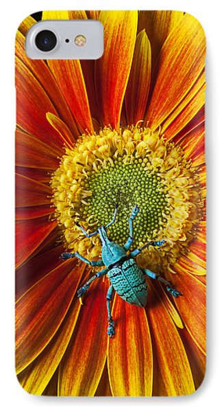 Boll Weevil On Mum Phone Case by Garry Gay