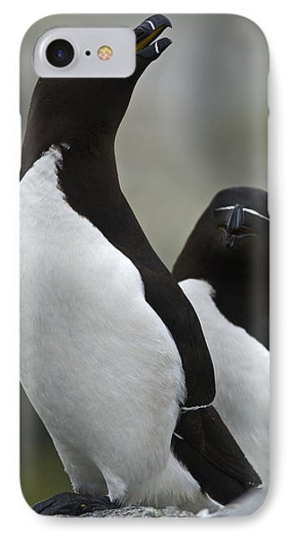 Bonded For Life... IPhone Case by Nina Stavlund