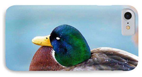 IPhone Case featuring the photograph Bonding In Winter - Male Mallard Duck - Diptych Part 1 by Menega Sabidussi