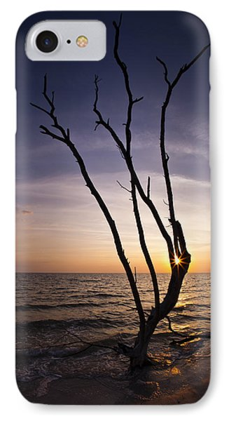 IPhone Case featuring the photograph Bonita Beach Tree by Bradley R Youngberg