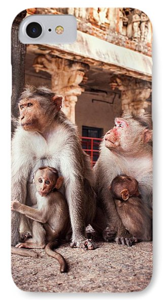 Bonnet Macaques And Young IPhone Case