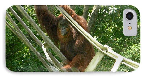 Bonnie The Orangutan IPhone Case