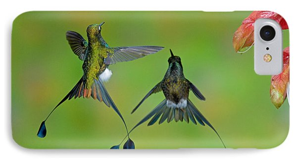 Booted Racket-tail Hummingbird Males Phone Case by Anthony Mercieca