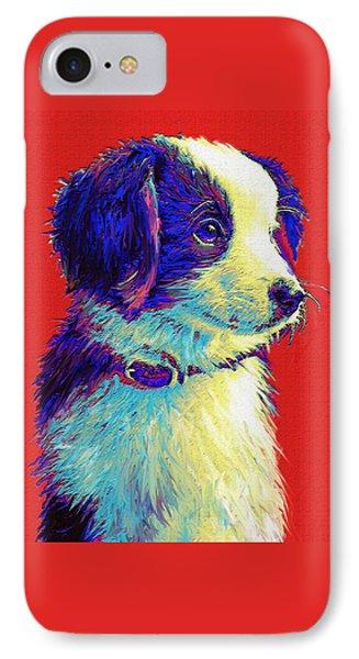 Border Collie Puppy IPhone Case by Jane Schnetlage
