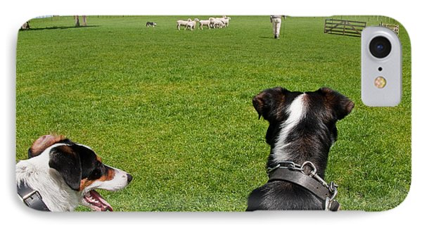 IPhone Case featuring the photograph Border Collies by Dennis Cox WorldViews
