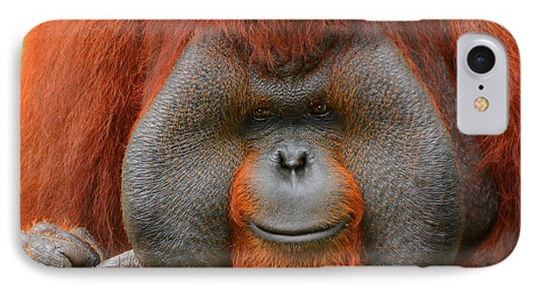 Bornean Orangutan IPhone 7 Case by Lourry Legarde