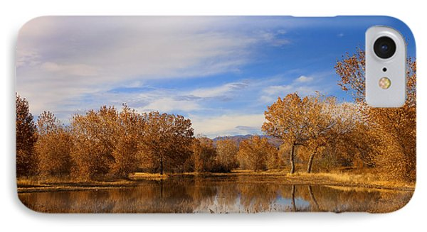 Bosque Del Apache Reflections IPhone Case by Mike  Dawson