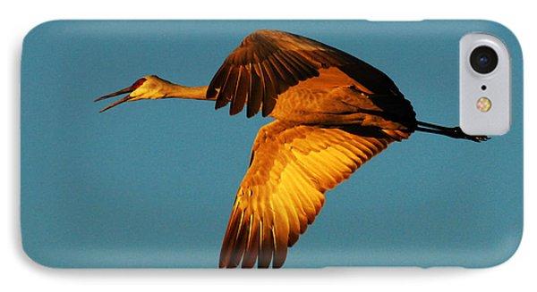 Bosque Del Apache Sandhill Crane Golden Light Phone Case by Bob Christopher