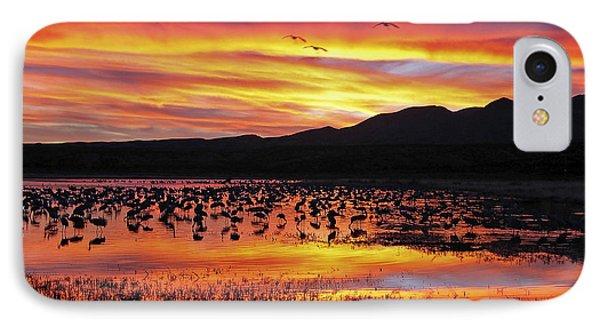 Bosque Sunset II Phone Case by Steven Ralser