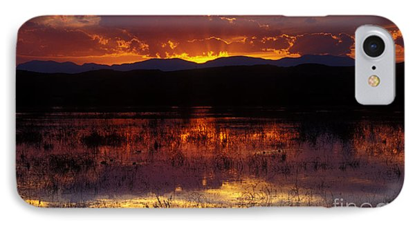 Bosque Sunset - Orange Phone Case by Steven Ralser