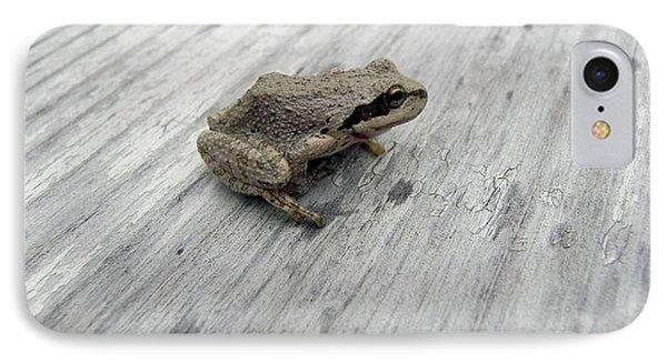 Botanical Gardens Tree Frog IPhone Case by Cheryl Hoyle