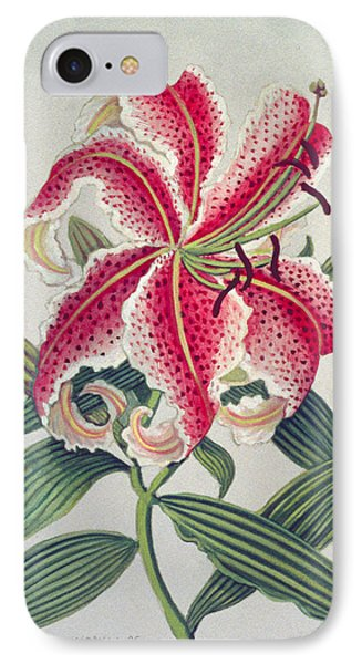 Botanical Lily IPhone Case by Lillian Delevoryas