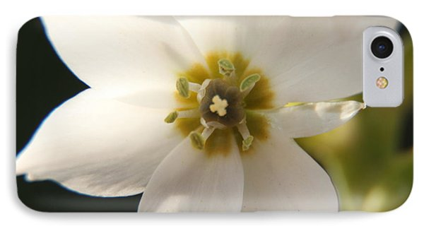 Botanical Purity IPhone Case