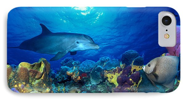 Bottle-nosed Dolphin Tursiops Truncatus IPhone Case by Panoramic Images