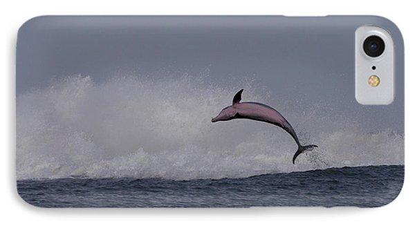 Bottlenose Dolphin Photo IPhone Case by Meg Rousher