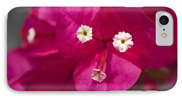 IPhone Case featuring the photograph Bougainvillea  by David Grant