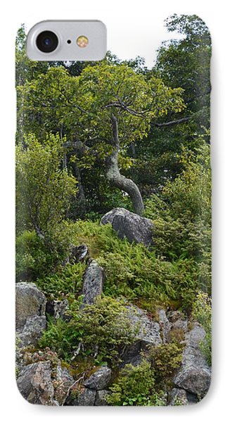 IPhone Case featuring the photograph Boulder Green by Cathy Shiflett
