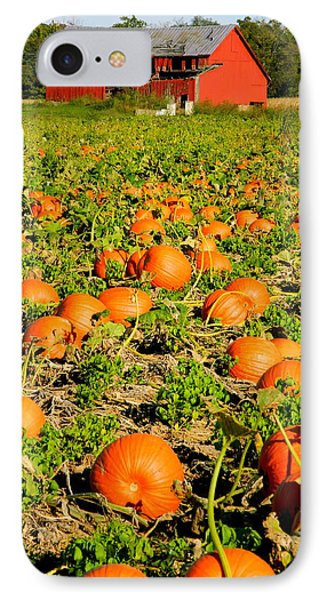 Bountiful Crop IPhone Case by Kathy Barney