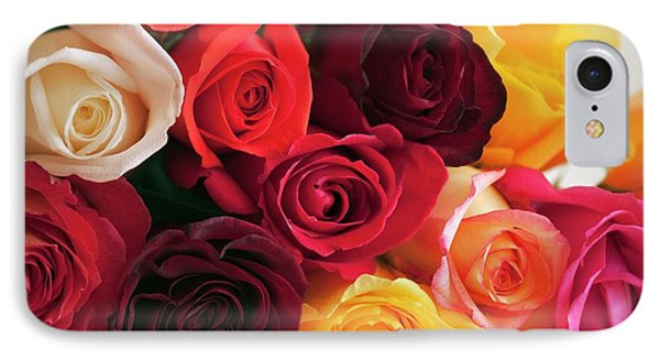 Bouquet Of Mixed Roses (rosa Hybrid) IPhone Case