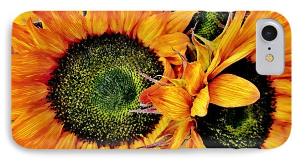 Bouquet Of Sunflowers Phone Case by Danielle  Parent