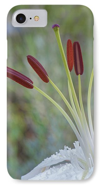 Bouquet On Bokeh IPhone Case by Jean-Pierre Ducondi
