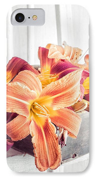 Box Of Day-lily  IPhone Case by Edward Fielding