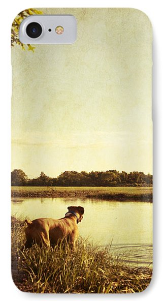 Boxer Dog By The Pond At Sunset Phone Case by Stephanie McDowell