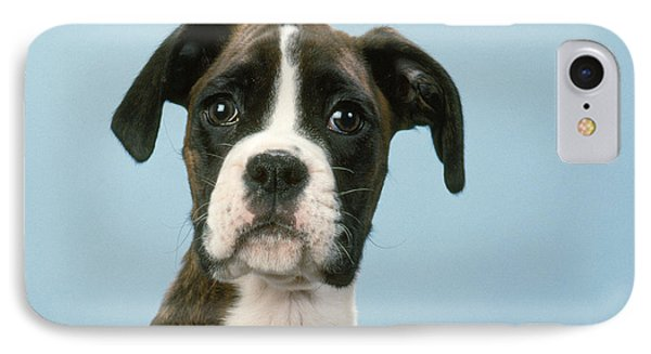 Boxer Dog, Close-up Of Head Phone Case by John Daniels