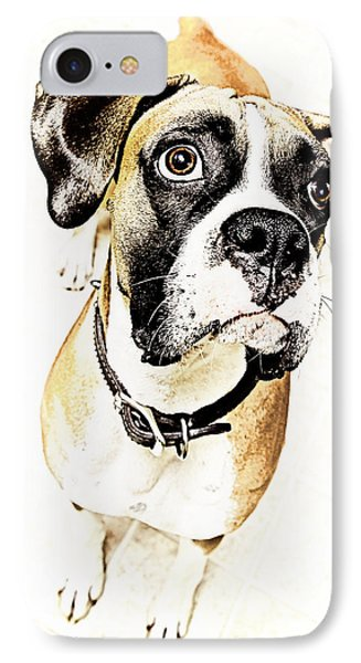 IPhone Case featuring the photograph Boxer Dog Poster by Peter v Quenter