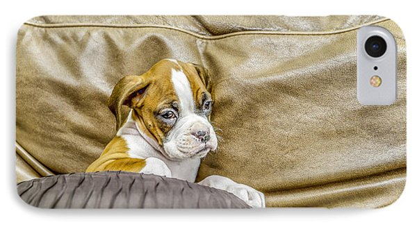 Boxer Puppy On Couch Phone Case by Tony Moran