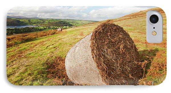Bracken Being Cut Above Ullswater IPhone Case by Ashley Cooper