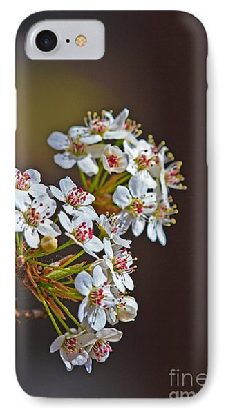 Bradford Blossoms IPhone Case