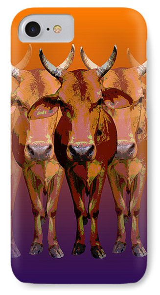 Brahman Cow IPhone Case by Jean luc Comperat