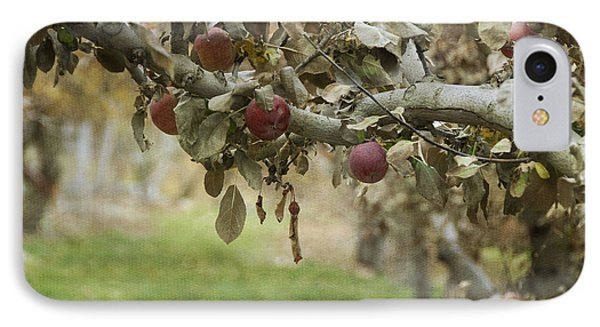 Branch Of An Apple Tree IPhone Case