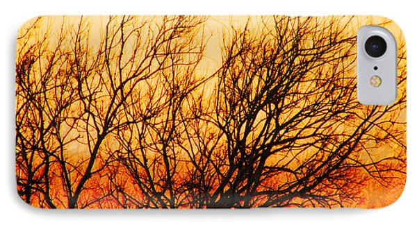 IPhone Case featuring the photograph Branchwork by Lizi Beard-Ward