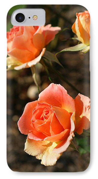 Brass Band Roses In Autumn IPhone Case