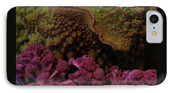 IPhone Case featuring the photograph Brassica Landscape by Patricia Overmoyer