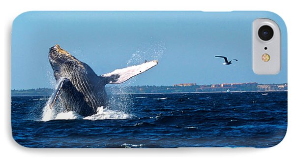 Breaching Whale IPhone Case