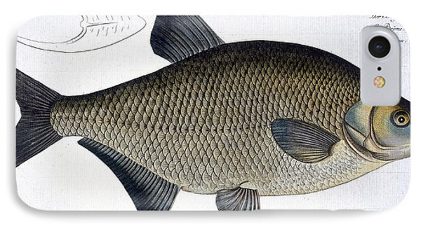 Bream Phone Case by Andreas Ludwig Kruger